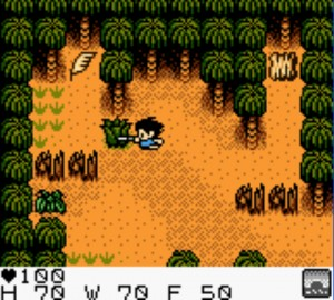 Surival Kids GBC game screenshot